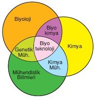 Biyoteknoloji Nedir? Biyoteknolojinin Uygulama Alanları Nelerdir?
