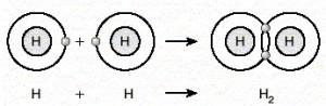 kovalent bag