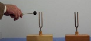 Sesin Rezonansı, Sesin Yansıması ve Soğurulması