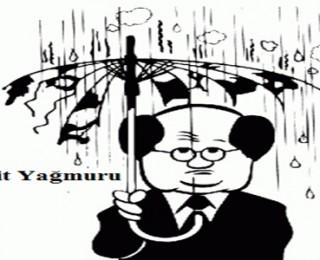 Asit Yağmurları ve Çevreye Etkileri