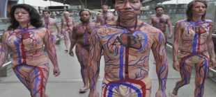İnsan Vücudu ile İlgili İlginç Bilgiler