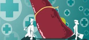 Karaciğer Yağlanmasına Karşı 10 Süper Besin