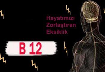 B12 Vitaminin Önemi Nedir