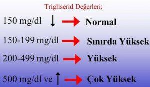 trigliserid-degeri