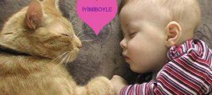 Kedi ve Köpeklerle Büyüyen Çocukların Daha Sağlıklı Olmasının 10 Bilimsel Kanıtı