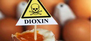 Dioksin Zehirlenmesi Nedir ve Dioksin İçeren Ürünler Nelerdir