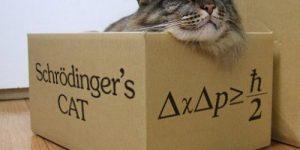 Schrödinger 'in Kedisi Bize Ne Anlatıyor?