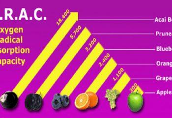 ORAC Nedir ve ORAC Değeri En Yüksek Besinler Nelerdir