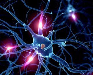 Serotonin Nedir ve Serotonin Düşüklüğünün Nedenleri Nelerdir