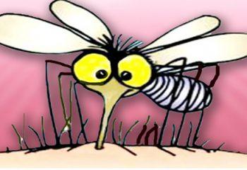 Sivrisinek Kaşıntısını Geçiren Etkili Yöntemler