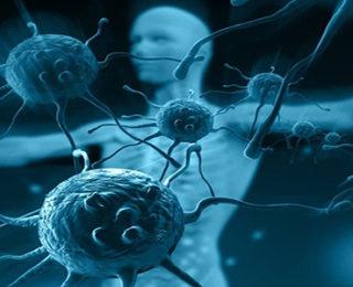 Corona Virüse Karşı Bağışıklık Sistemini Güçlendirmek İçin Neler Yapmalıyız